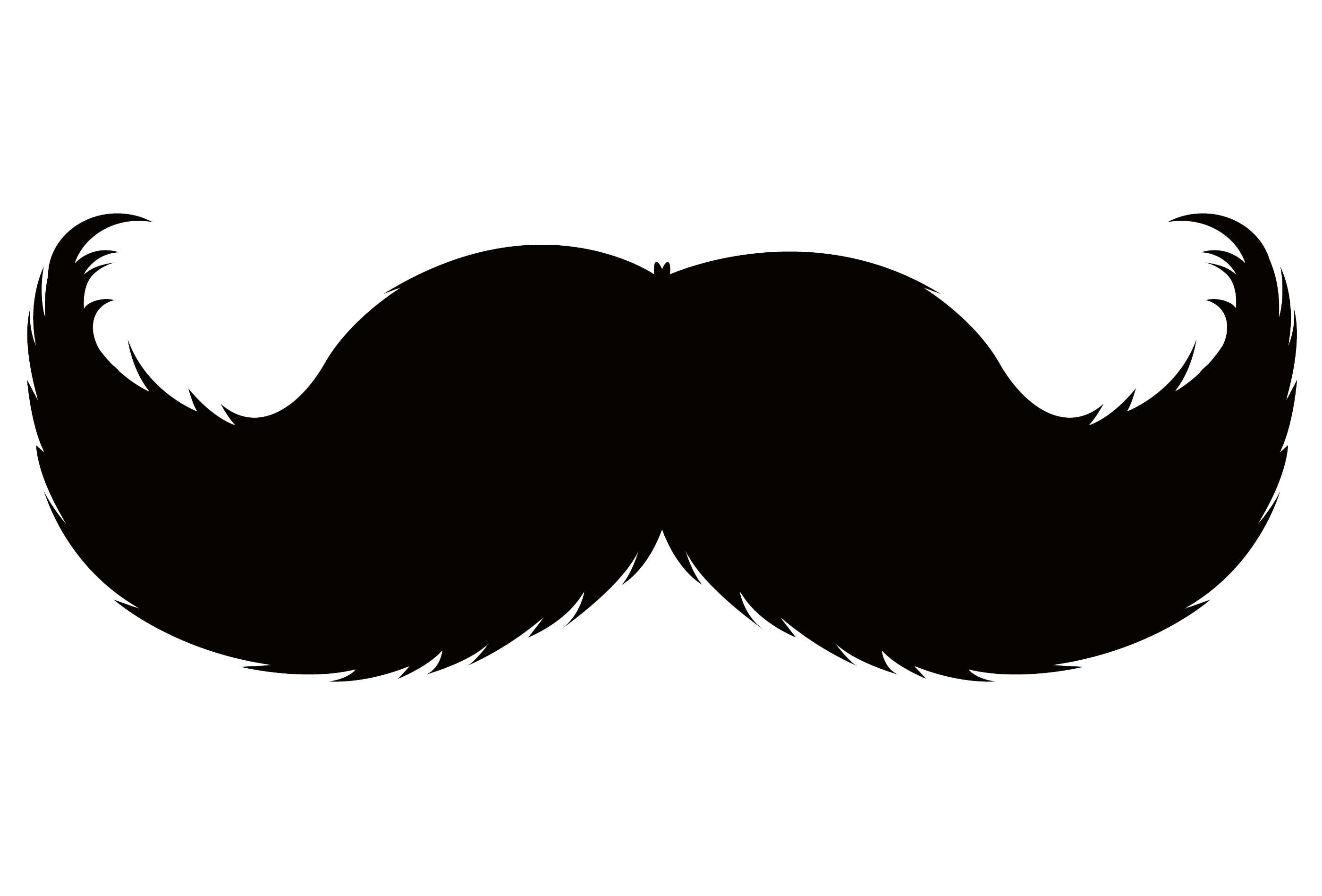 WILKIN GROUP'S FUNDRAISING FOR MOVEMBER